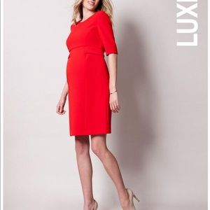 SERAPHINE MATERNITY red dress size: 4 BNWT